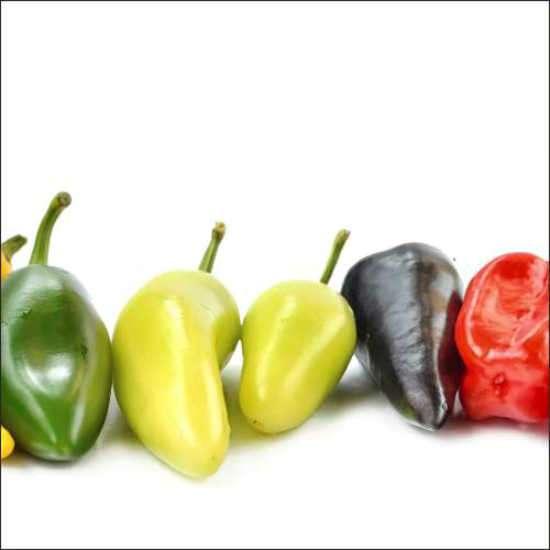 Küchenrückwand Chili colors