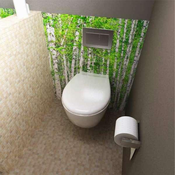 Rückwand Toilette Birkenwald
