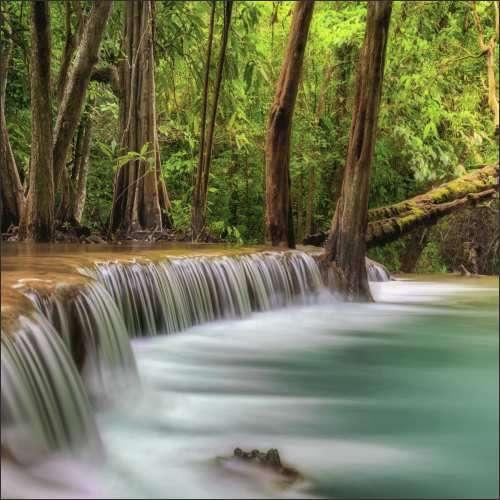 Küchenrückwand Wasserfall im Wald