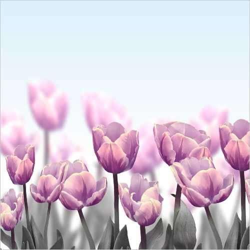 Küchenrückwand Tulpenfeld