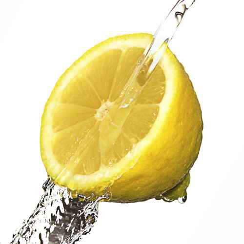 Küchenrückwand Zitrone