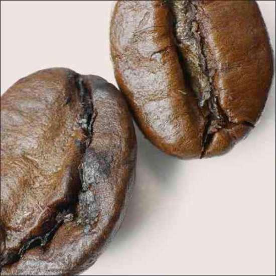 Küchenrückwand große Kaffeebohnen