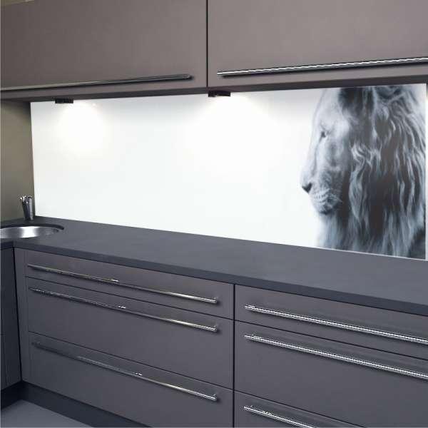 Küchenrückwand Löwe