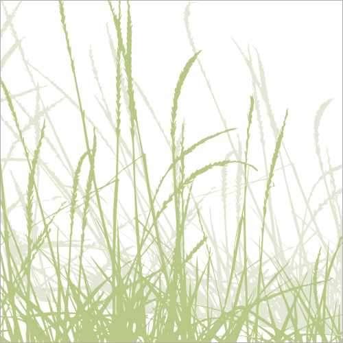 Küchenrückwand grüne Gräser