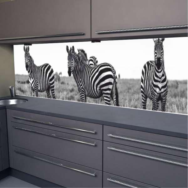 Küchenrückwand Zebras