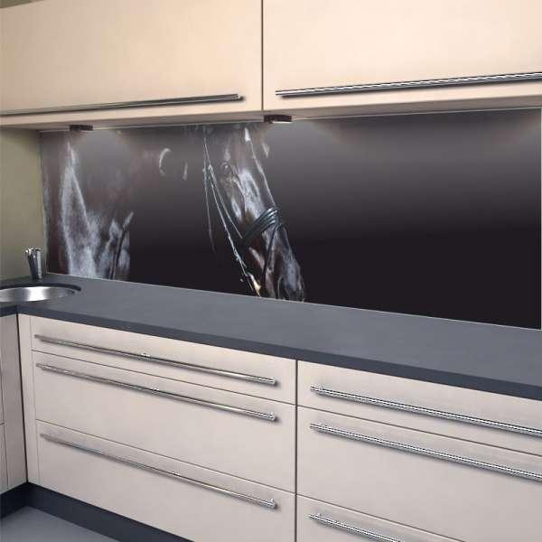 Küchenrückwand Black Beauty