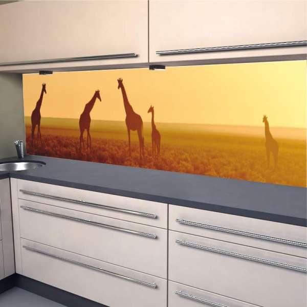 Küchenrückwand Giraffen