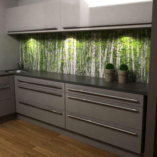 Küchenrückwand mit Birkenwald 02