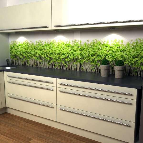 Küchenrückwand Kresse in Küche