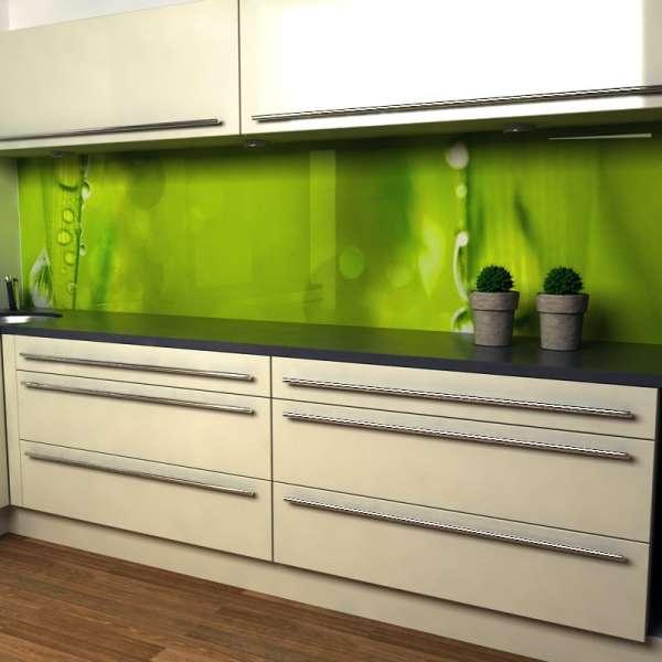 Küchenrückwand Blätter mit Tau in küche