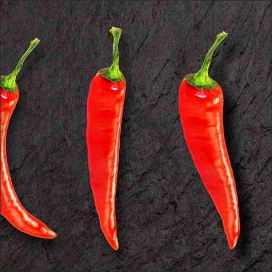 Küchenrückwand Chili