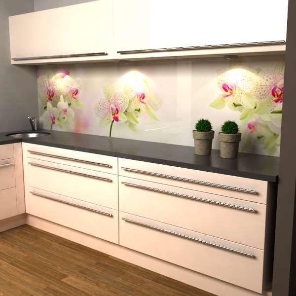 Küchenrückwand mit weißen Orchideen