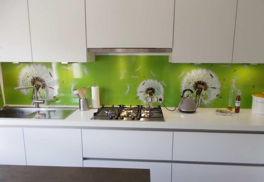 Spritzschutz küchen